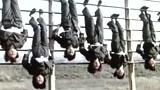 中国军人震撼全球功夫视频 徒手劈红砖指尖俯卧撑