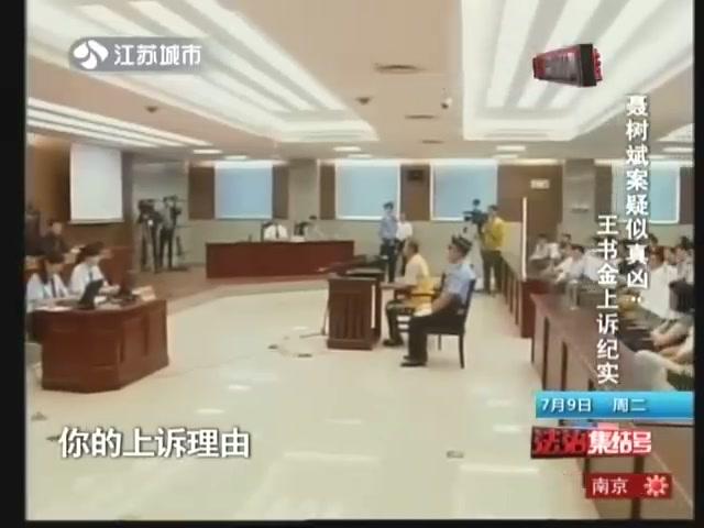 聂树斌案疑似真凶:王书金上诉纪实截图