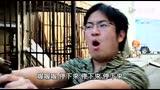 华人小胖_黑人二人组——恐怖平衡图片