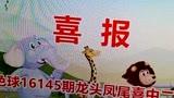 朱彩门彩票视频讲解:软件如何优化双色球龙头凤尾