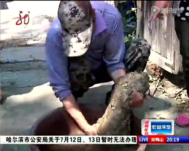 """相关报道:农民疑似在自家菜地挖出""""太岁""""截图"""
