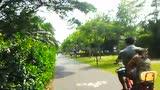 深圳弯海滨公园红树林拍摄QQ583043240