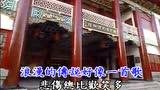 刘德华 - 风中的歌