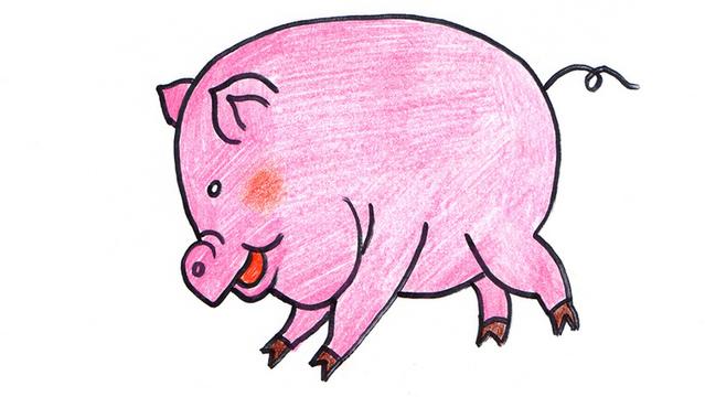 教你画一只大肥猪简笔画 家长一定要学哦