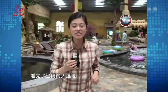 齐齐哈尔印象:鹤舞鸣霄在扎龙