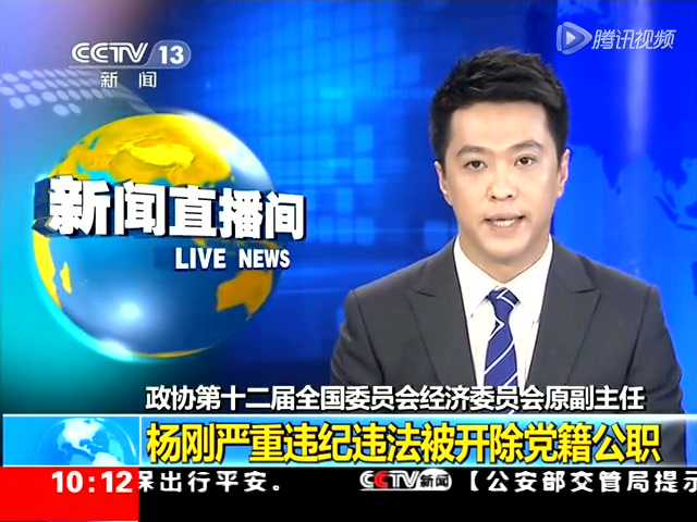 全国政协经委会原副主任杨刚受贿通奸被双开截图