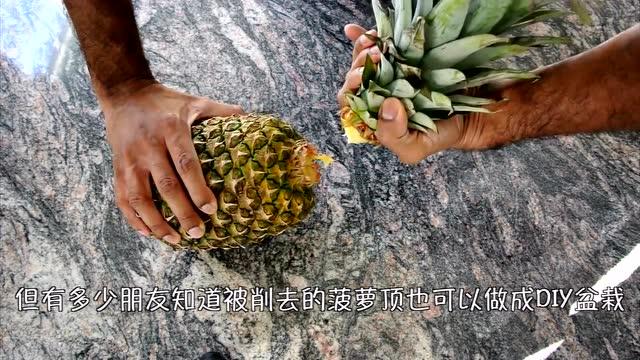 7菠萝结 中国结的编法视频教程