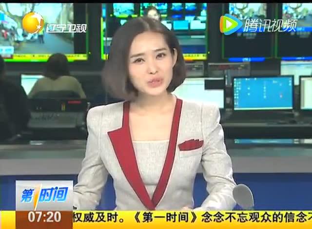 贝德勒庄海湛北京电视台报道