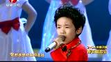 华语群星 - 想你的365天 [2014安徽卫视春晚 Live]