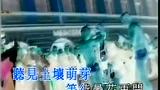 王菲 - 彼岸花(怀旧版)