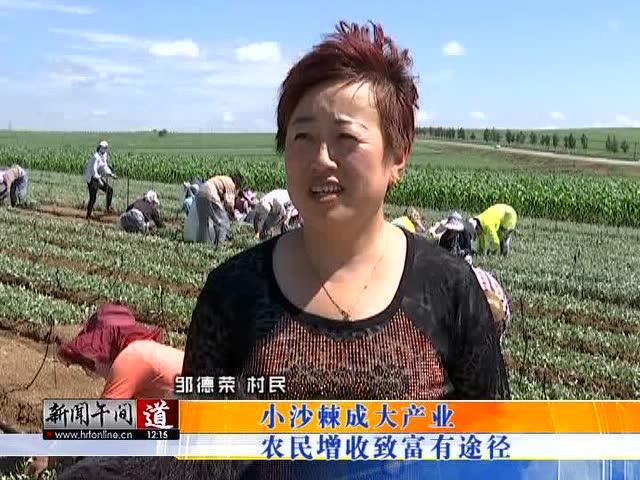 龙江县鲁河乡沙棘木耳晾晒过程
