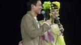 刘德华 - 月亮代表我的心(Live)