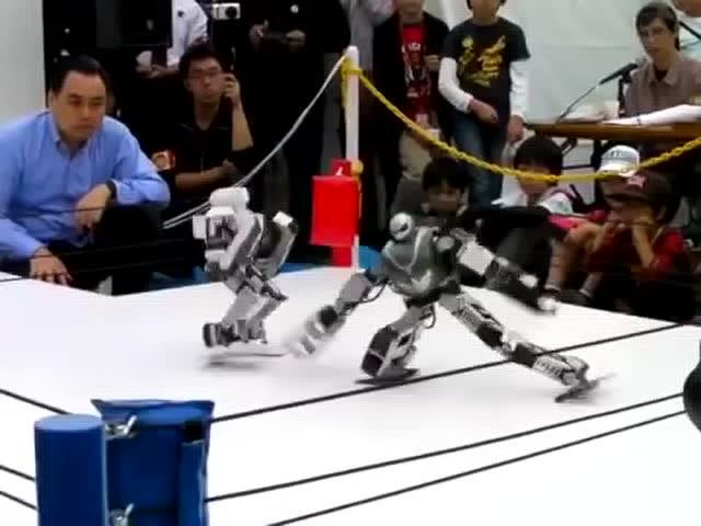 笑死人不償命的機器人格斗,這姿勢實在銷魂!