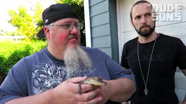 作死:男子讓小鱷魚咬嘴唇 痛得哇哇大叫