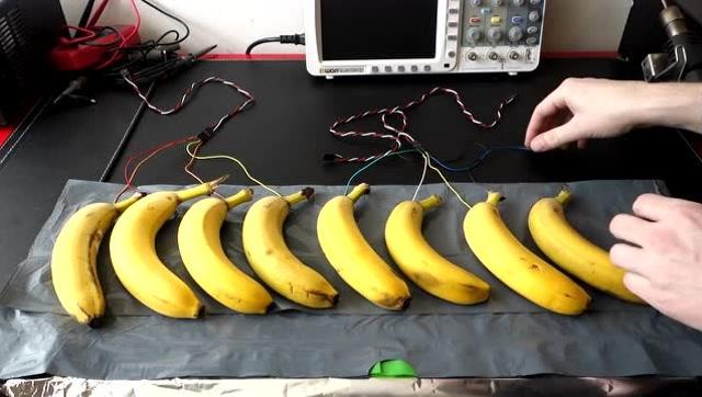 厉害了!看技术达人如何用香蕉弹琴