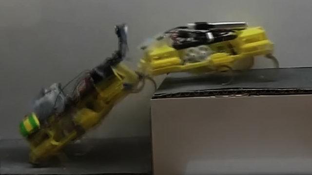 碉堡了!两只蟑螂机器人互相配合上台阶