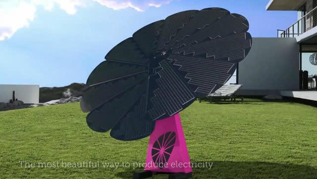 """在自家后院种一朵""""向日葵"""",一百年都不用交电费"""
