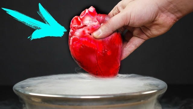 把心脏放进-195℃液氮中会发生什么?