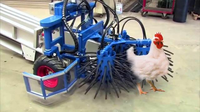 全自動抓雞神器,1小時能抓8000只雞