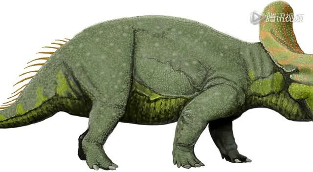 """英海滩发现恐龙化石 属霸王龙""""迷你祖先"""""""