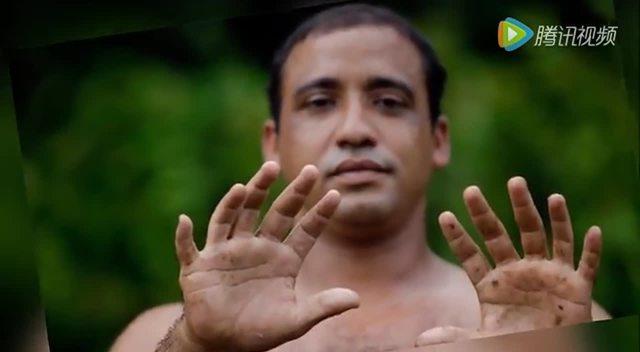 华德福手指谣 第四季 三片树叶