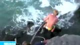 实拍男子用钩子将虎鲨拽上岸残忍虐待
