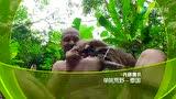 CCTV10 21点档《单挑荒野-泰国》