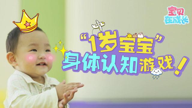 1岁宝宝的身体认知游戏