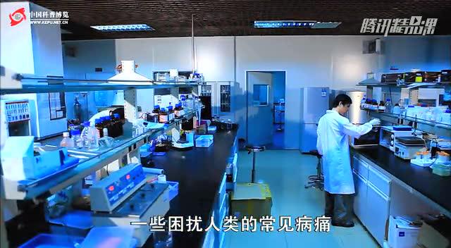 前沿纪录片《神奇干细胞》