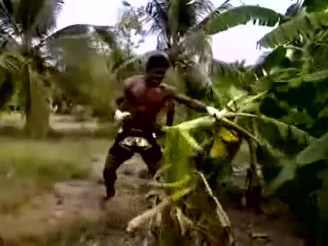泰拳高手用脚踢断芭蕉树!强悍