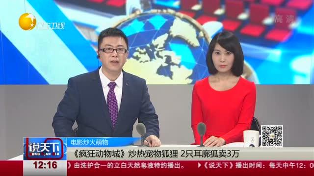 电影炒火萌物:《疯狂动物城》炒热宠物狐狸 2只耳廓狐卖3万