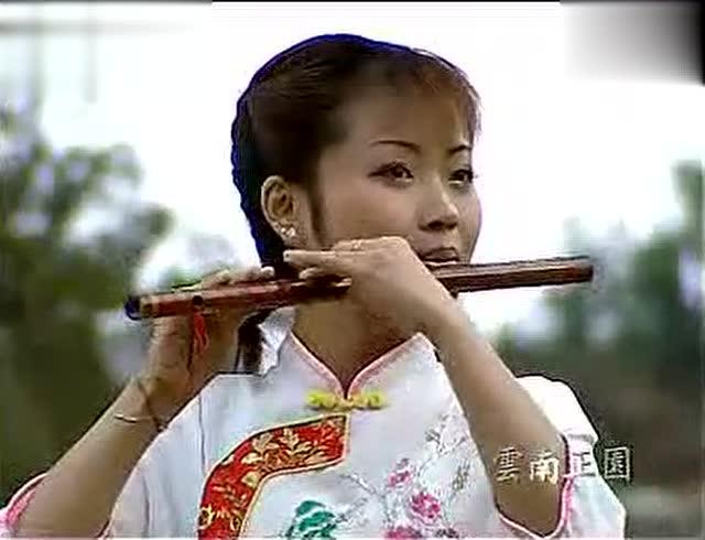 董敏 笛子演奏 《荷塘月色》