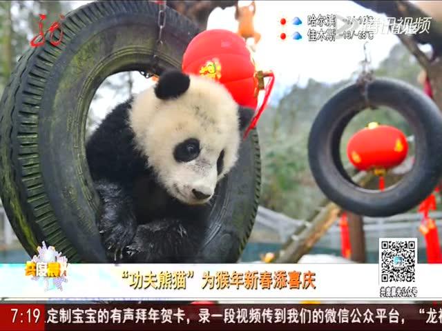 ps平面设计教程-电影海报之功夫熊猫