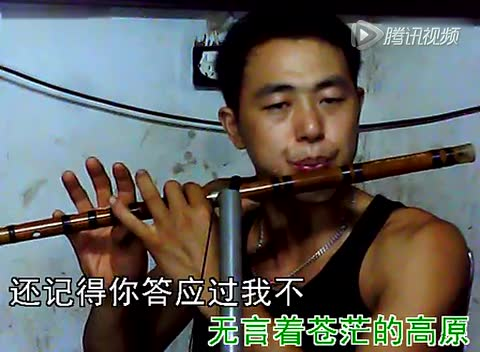 杨明笛子曲·西海情歌