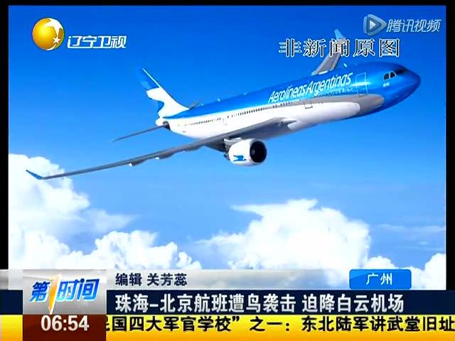 南航一航班起飞后遭鸟击 发动机冒烟迫降广州