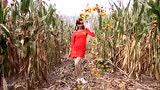 微小微竟然在玉米地里跳起现代舞,这舞姿,真带感!