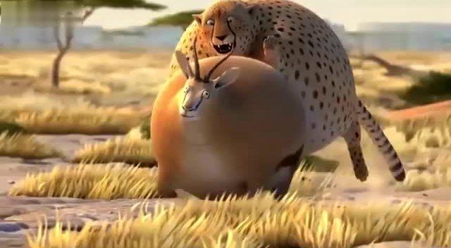 如果动物长胖了 终于找到完整版