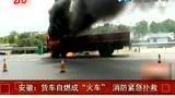 货车高速路自燃 现场浓烟滚滚