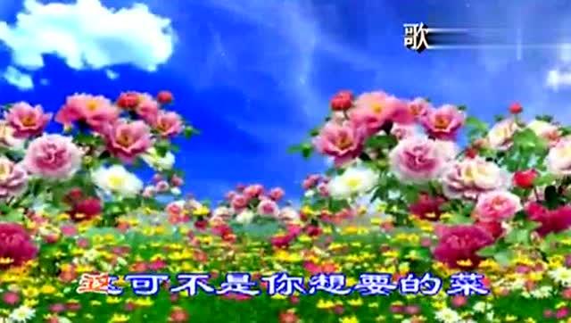 《群里的野花不要采》