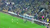 诺维奇4-2沃特福德 主队积分追平纽卡斯尔