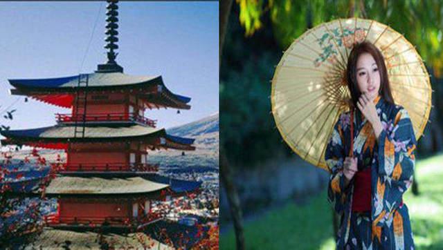 游客偷日本马桶盖《伤不起》