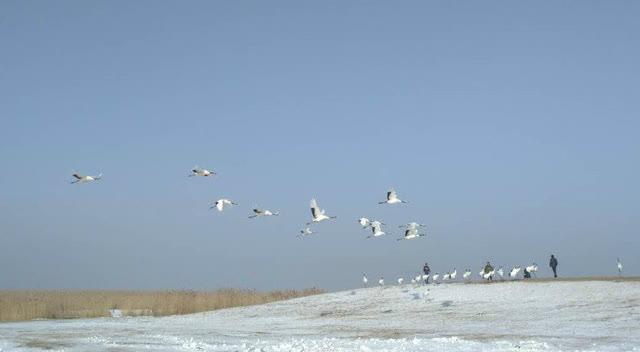 齐齐哈尔冬天最好玩的地方
