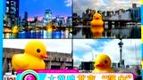 大黄鸭落户颐和园