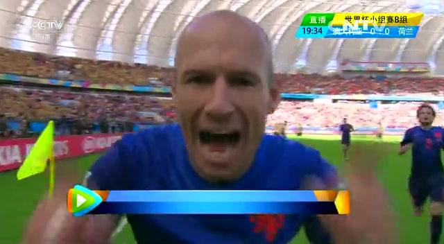 全场集锦:澳大利亚2-3荷兰 罗本范佩西进球截图