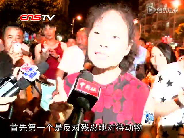 玉林狗肉节前夜爱狗人士与当地市民当街激辩截图