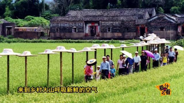 乡村小孩风景图