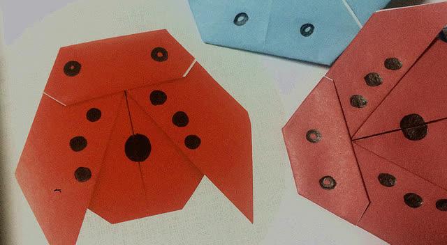 儿童折纸no.1|视频 手把手教你折瓢虫,秒变手工小达人