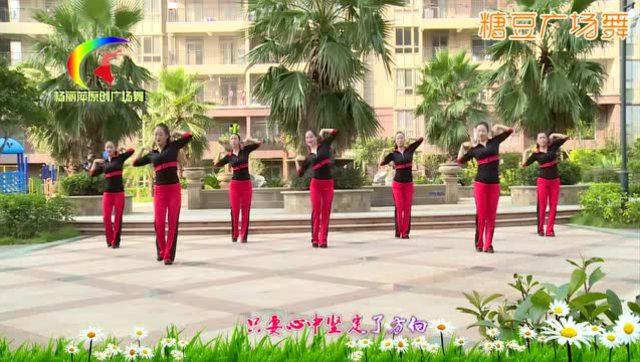 清荷广场舞《饮酒欢歌》水兵舞16步