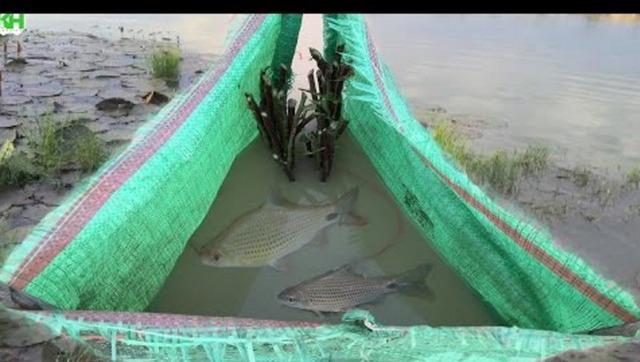 农村小男孩独自制作捕鱼陷阱,捕获大鱼