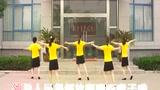 2014最新广场舞 浏阳河 爱DJ快加QQ407684595